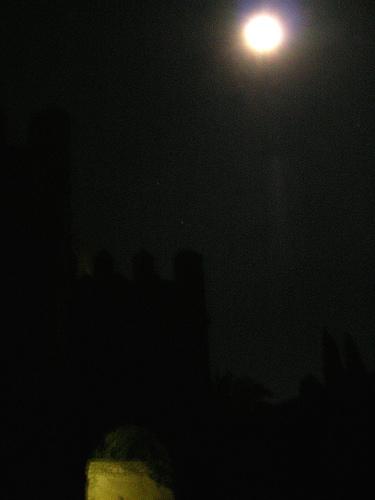 nocturnos y nieblas 009