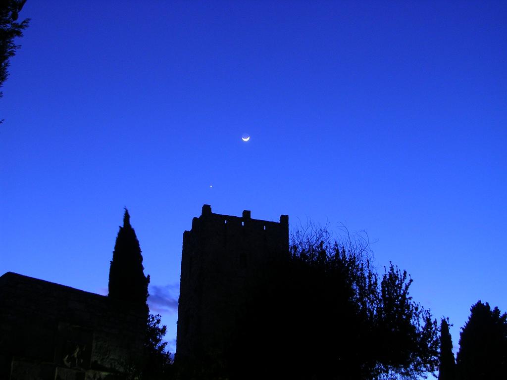 nocturnas 010