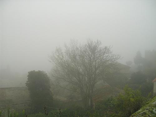 Niebla 090